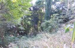 REF: 599 - Terreno em Ilhabela-SP  Cachadaço