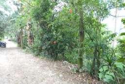 Terreno à venda  em Ilhabela-SP - Praia da Vila REF:411