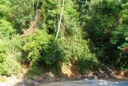 Terreno à venda  em Ilhabela-SP - Barra Velha Alta REF:624