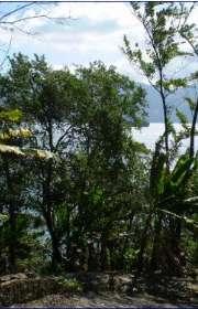terreno-a-venda-em-ilhabela-sp-norte-da-ilha-ref-254 - Foto:3
