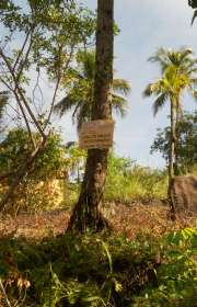 terreno-a-venda-em-ilhabela-sp-siriuba-i.-ref-442 - Foto:8