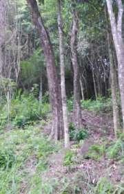terreno-a-venda-em-ilhabela-sp-cachadaco-ref-te-656 - Foto:2