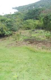 terreno-a-venda-em-ilhabela-sp-praia-da-armacao-ref-te-668 - Foto:8