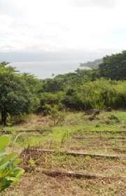 terreno-em-condominio-loteamento-fechado-a-venda-em-ilhabela-sp-praia-da-armacao-ref-te-668 - Foto:20