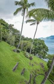 terreno-a-venda-em-ilhabela-sp-ponta-das-canas-ref-te-664 - Foto:3