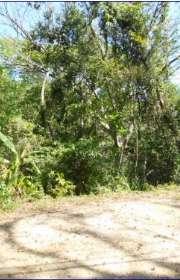 terreno-a-venda-em-ilhabela-sp-sul-da-ilha-ref-373 - Foto:2
